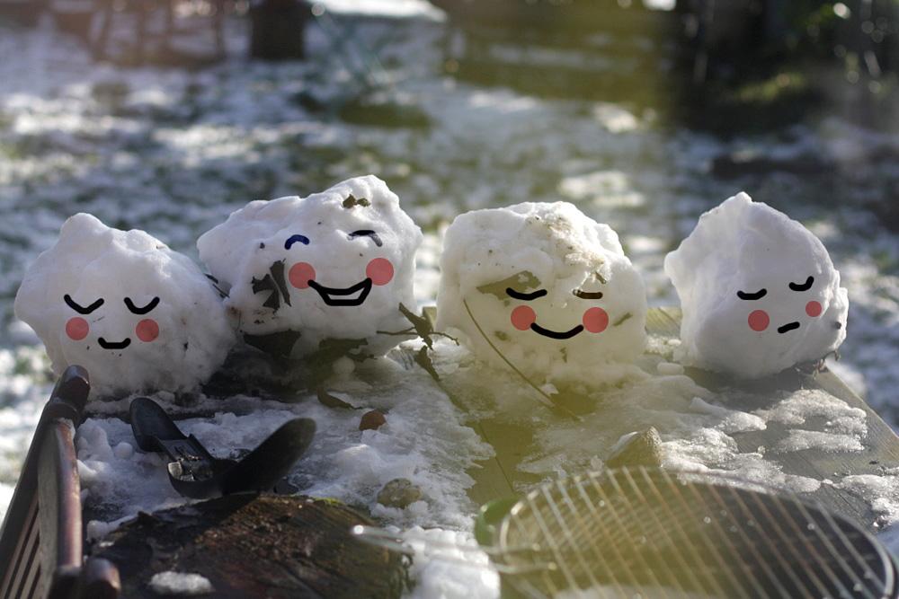sneeuwpopjes